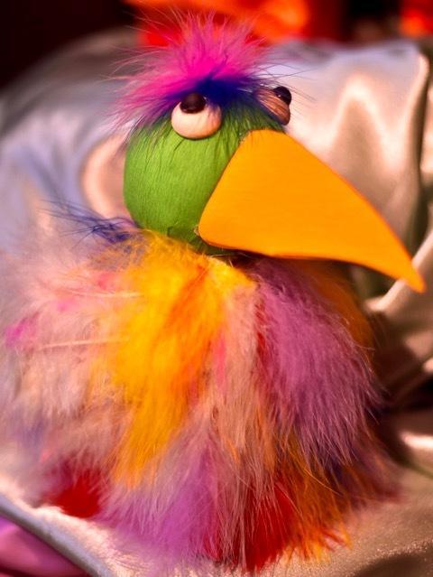 Bird of Paradise 20 pc box